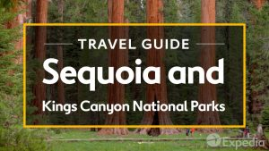 Sequoia and Kings Canyon National Parks Vacation Travel Guide I Expedia
